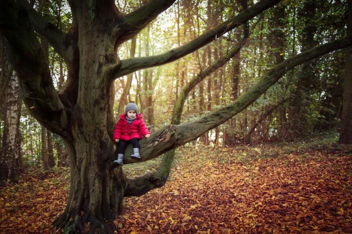 Tânia Flores Photography Kind auf dem Baum